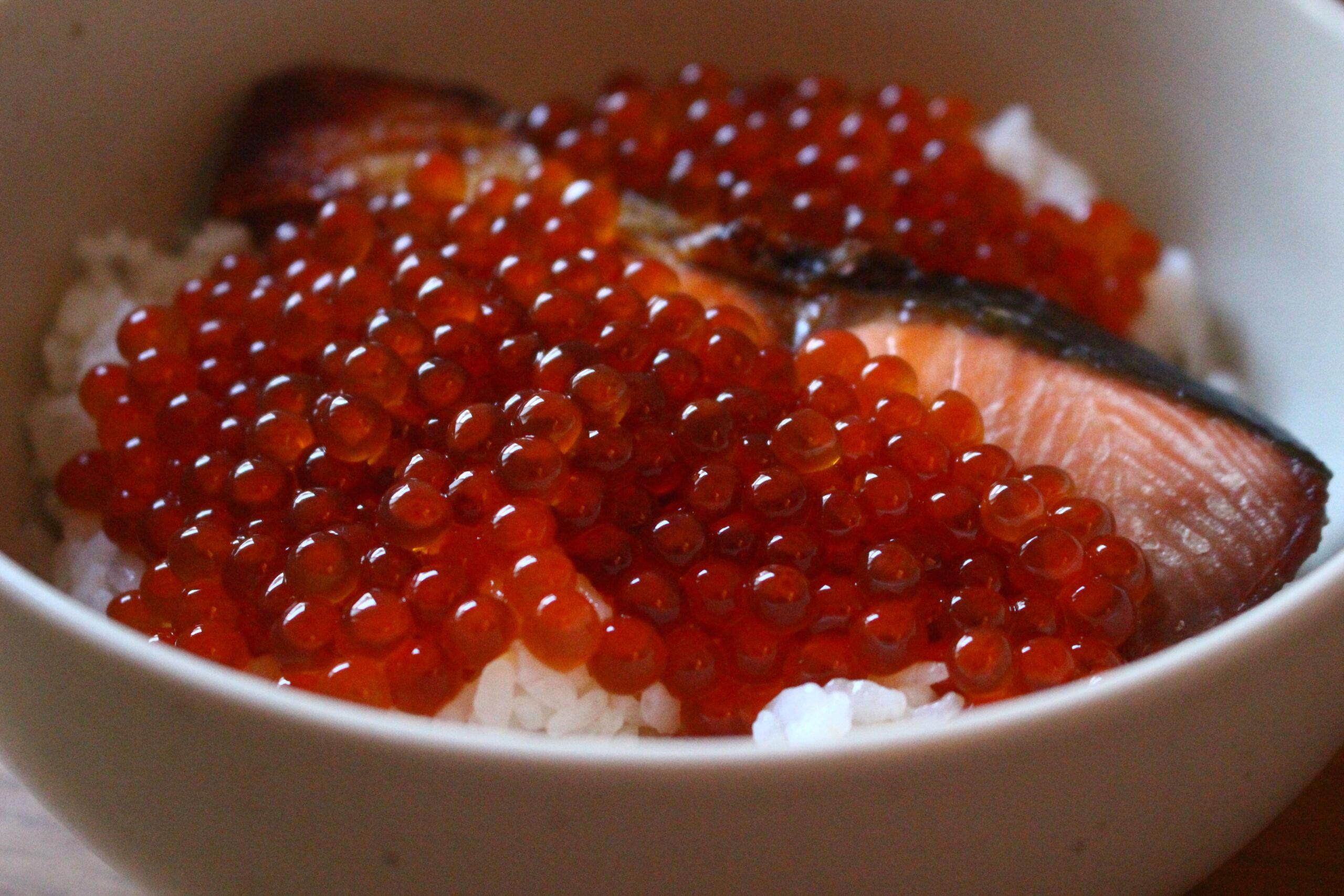 鮭といくらの親子飯